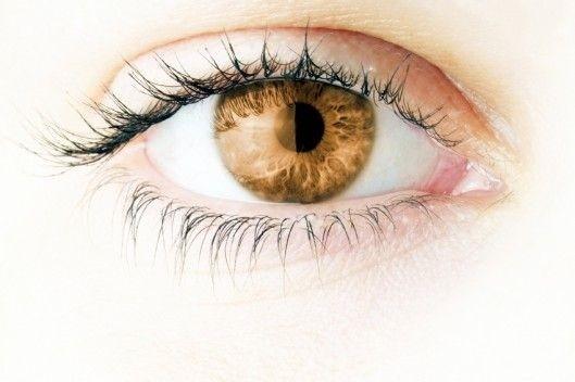 Starlens pupilliavaga 1-kuused BROWN 0,00 2 tk